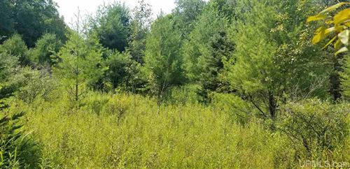 Photo of TBD Woodland Parcel 1, Iron Mountain, MI 49801 (MLS # 1124359)