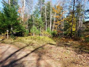Photo of TBD N Riverhills, Kingsford, MI 49802 (MLS # 1118363)