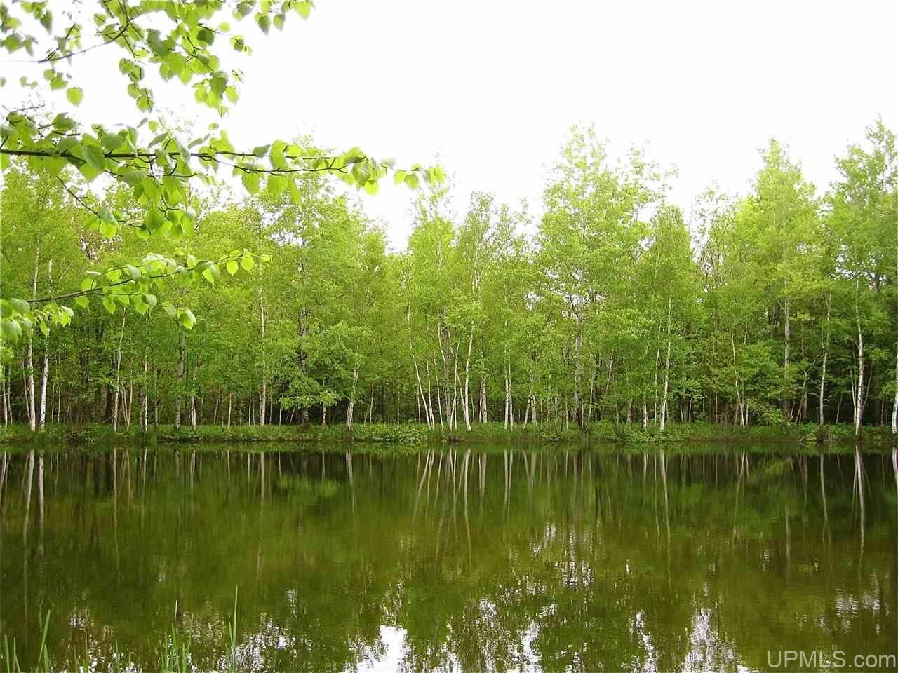 Photo of 58340 Calumet Waterworks, Calumet, MI 49913 (MLS # 1128476)