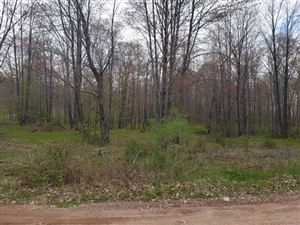 Photo of TBD Millie Estates, Iron Mountain, MI 49801 (MLS # 1114521)