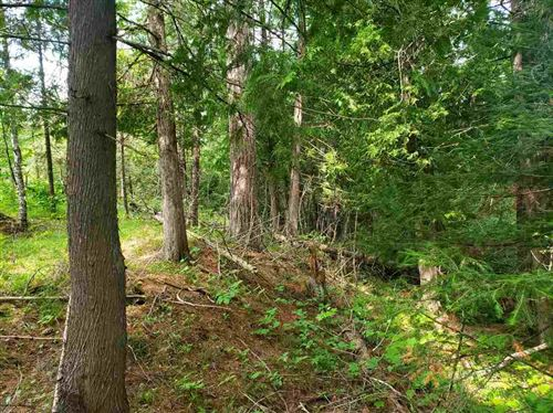 Photo of TBD Leeman, Ralph, MI 49877 (MLS # 1119522)