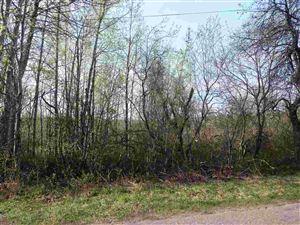 Photo of TBD Horseshoe Bend, Mohawk, MI 49950 (MLS # 1117534)