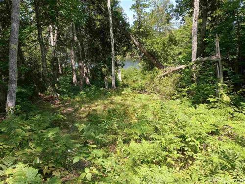 Photo of Lot 1 Medora, Eagle Harbor, MI 49950 (MLS # 1126629)