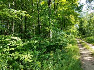 Photo of TBD off Co Rd 426, Ralph, MI 49877 (MLS # 1111859)