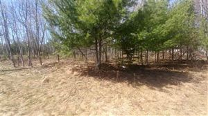 Photo of Lot One Tall Pines, Iron Mountain, MI 49801 (MLS # 1111892)