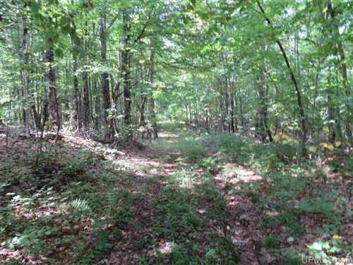 Photo of 40-Acres Off Black Creek #Lat 46.85337 Lon -88, Skanee, MI 49962 (MLS # 1126945)