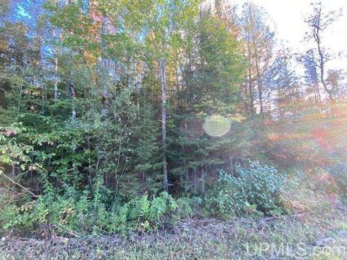 Photo of TBD Chapman, Niagara, WI 54151 (MLS # 1129986)