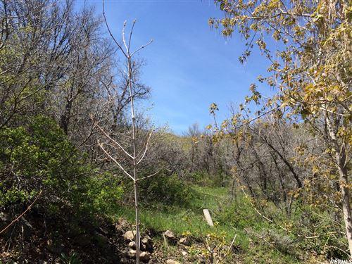 Photo of 3000 E LEFTHAND FORK #40, Springville, UT 84663 (MLS # 1730138)