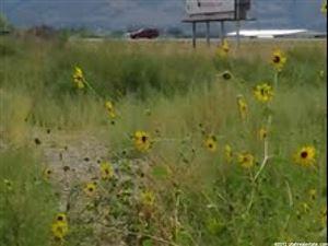 Photo of 3188 N 2000 W, Farr West, UT 84404 (MLS # 750197)