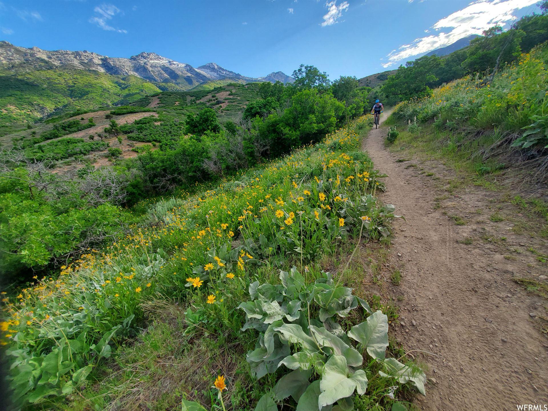 Photo of 476 E ADAM CIR #64, Alpine, UT 84004 (MLS # 1691327)