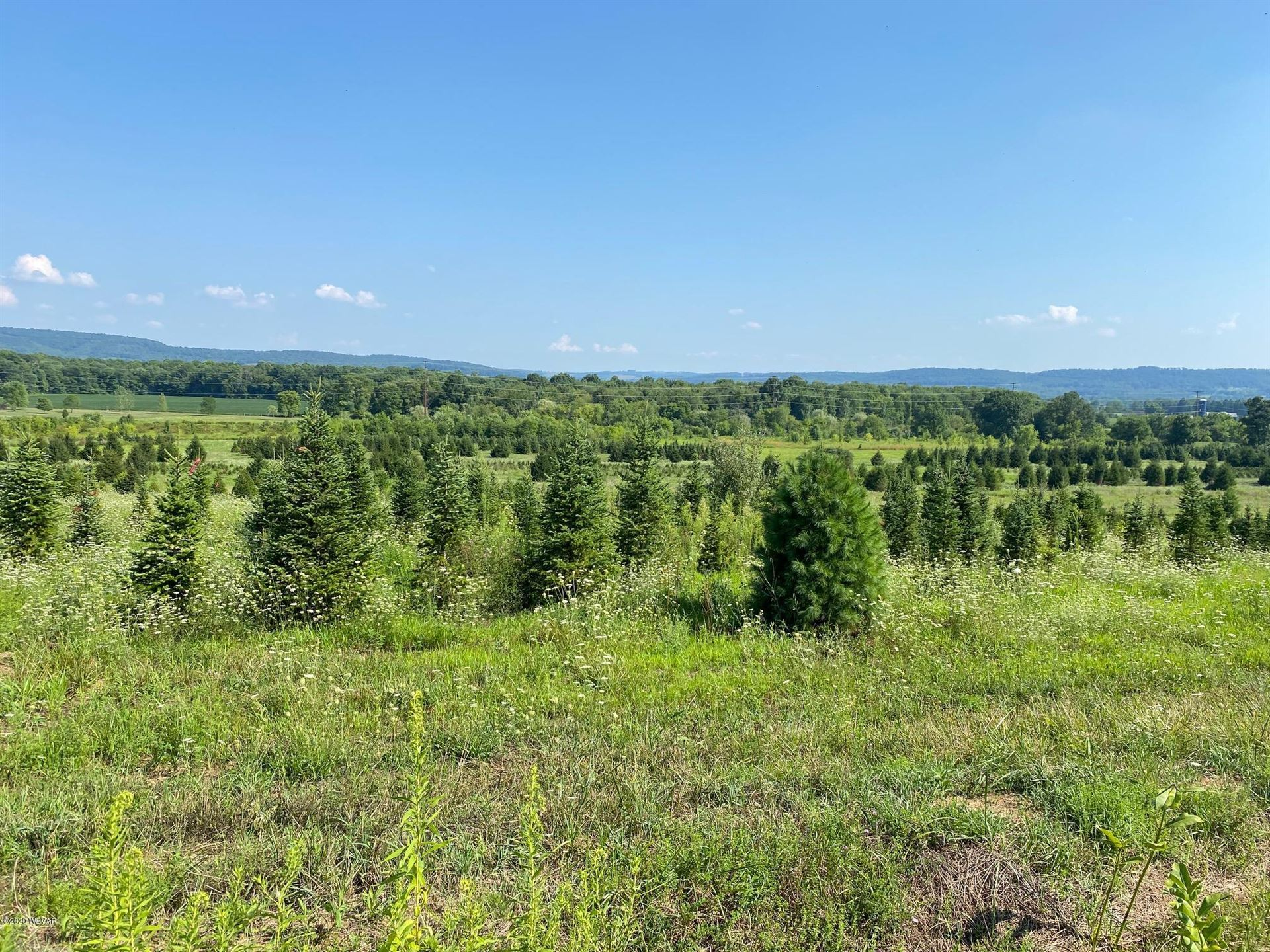 LIME BLUFF ROAD, Hughesville, PA 17737 - #: WB-91078