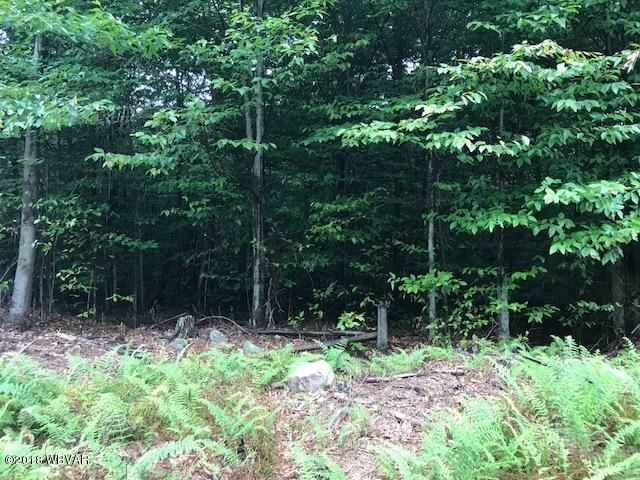 LOT 13 GROUSE WOODS DRIVE, Muncy Valley, PA 17758 - #: WB-85079