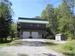 Photo of 1243 4TH GAP ROAD, Loganton, PA 17747 (MLS # WB-88614)