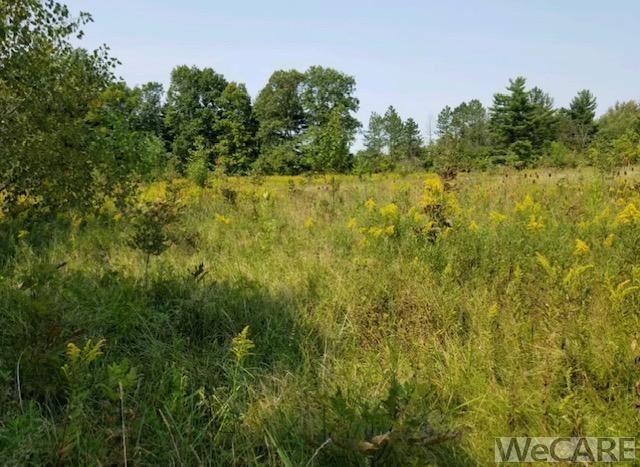 Photo of 00 E. Breese Rd., Lima, OH 45806 (MLS # 206417)