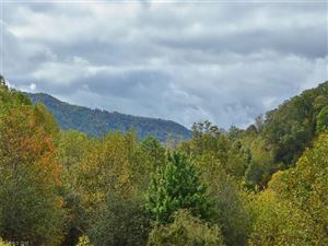 Tiny photo for 93 Merry Way, Clyde, NC 28721 (MLS # 3329001)