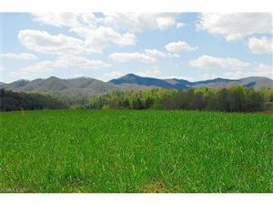 Tiny photo for 330 Tilson Road #3, Marshall, NC 28753 (MLS # 3342012)