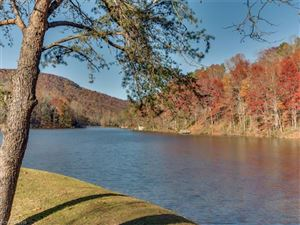 Tiny photo for 147 West Lake Drive #1203, Lake Lure, NC 28746 (MLS # 3349016)