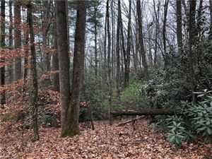 Tiny photo for TBD Abbey Lane, Hendersonville, NC 28792 (MLS # 3349026)