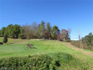 Photo of 00 Jacks Creek Road, Burnsville, NC 28714 (MLS # 3352032)
