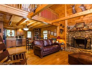 Tiny photo for 1863 Roaring Fork Road, Hot Springs, NC 28743 (MLS # 3179041)