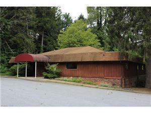 Tiny photo for 86 Greenville Street, Saluda, NC 28773 (MLS # 3143042)