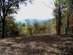 Tiny photo for LOT 1 Rambling Ridge Road, Asheville, NC 28804 (MLS # 3341046)