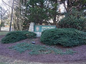 Photo of lot 6 Logan Court, Lake Lure, NC 28746 (MLS # 3267061)