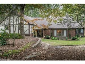 Tiny photo for 3001 Chestnut Tree Road, Hendersonville, NC 28792 (MLS # 3348064)