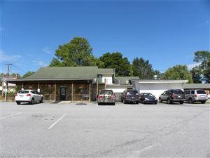 Photo of 4165 Brevard Road, Horse Shoe, NC 28742 (MLS # 3300066)