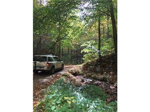 Tiny photo for 682 Rock House Road, Hot Springs, NC 28743 (MLS # 3232084)