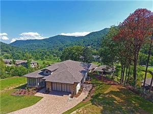 Tiny photo for 10 Plateau Drive #10, Maggie Valley, NC 28751 (MLS # 3341103)
