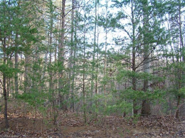 Photo for 17 Grouse Ridge Drive, Bostic, NC 28018 (MLS # 3351107)