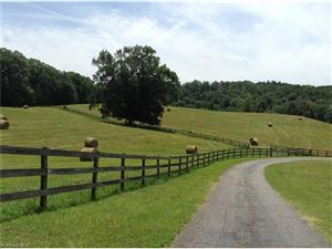 Tiny photo for 1400 Hwy 9 Highway N, Mill Spring, NC 28756 (MLS # 3343115)