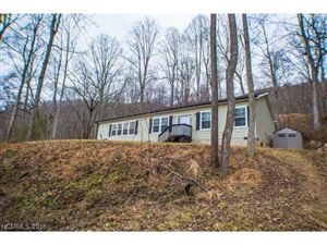 Photo of 342 Hookers Gap Road, Candler, NC 28715 (MLS # 3348135)