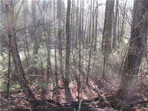 Photo of 0 Burge Mountain Road, Hendersonville, NC 28791 (MLS # 3265148)