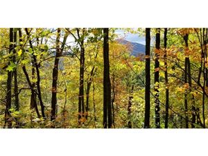 Tiny photo for 10 Big Boulder Ridge Road, Maggie Valley, NC 28751 (MLS # 3344194)