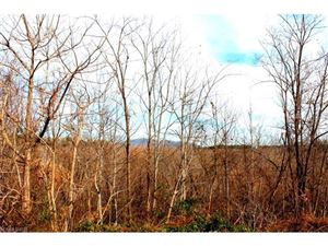 Tiny photo for 263 Coyote Pass Lane, Rutherfordton, NC 28139 (MLS # 3348215)