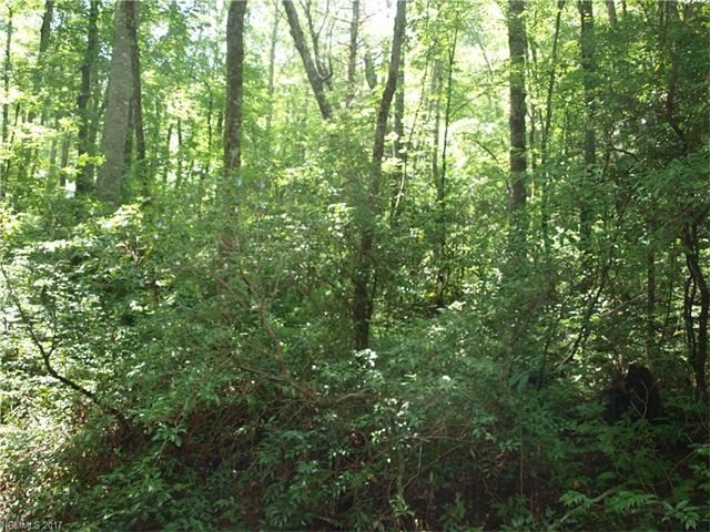 Photo for 000 Holiday Road, Brevard, NC 28712 (MLS # 3303235)
