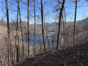Tiny photo for LT 222 Lilywood Court #222, Tuckasegee, NC 28783 (MLS # 3349236)