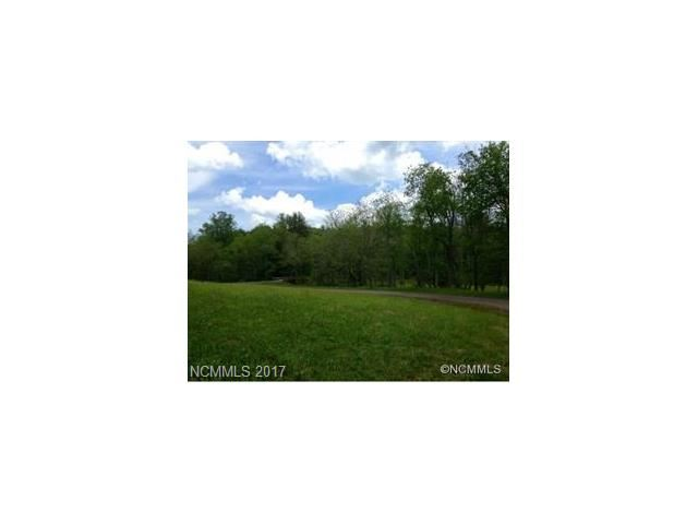 Photo for 2067 Emmas Grove Road #Lots 1, 2 & 3, Fairview, NC 28730 (MLS # 3332242)