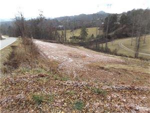 Photo of 9999 Piney Knob Road, Marshall, NC 28753 (MLS # 3352245)