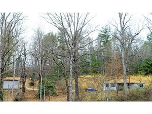 Photo of 118 Elk Dell Lane, Zirconia, NC 28790 (MLS # 3317252)