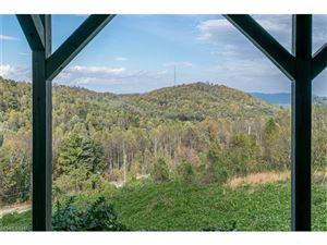 Tiny photo for 246 Pinnacle Mountain Road, Zirconia, NC 28790 (MLS # 3325252)