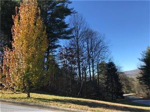 Photo of 152 Eagle View Drive #9, Brevard, NC 28712 (MLS # 3340280)