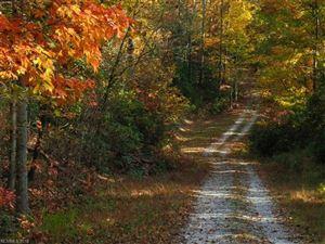 Tiny photo for 9999 Wild Rose Lane #11, Brevard, NC 28712 (MLS # 3351302)