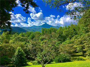Photo of 70 Pisgah View Ranch Road, Candler, NC 28715 (MLS # 3306324)
