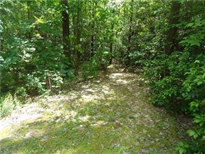 Photo of 306 Old Spring Drive, Brevard, NC 28712 (MLS # 3266327)