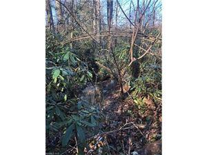 Tiny photo for 0 Slick Rock Road, Hendersonville, NC 28792 (MLS # 3348336)