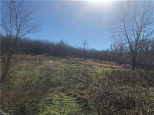 Tiny photo for 1559 Slick Rock Road, Hendersonville, NC 28792 (MLS # 3348342)