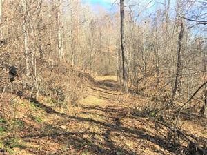 Tiny photo for 1124 Indian Creek Road, Burnsville, NC 28714 (MLS # 3343343)
